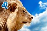 Подарок для Льва